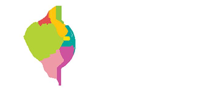 Fabric Universe Logo